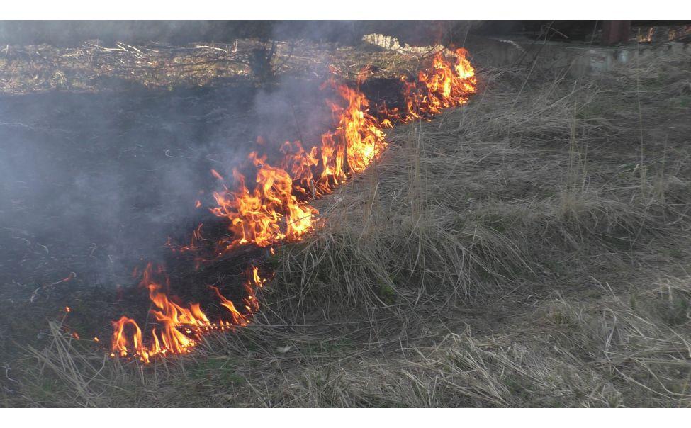 В Чувашии вступил в силу закон об ужесточении ответственности за пал травы
