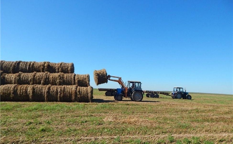 Плановые показатели по заготовке сена выполнены в хозяйствах 6 районов Чувашии